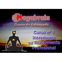 CURSO 01 - RENDIMIENTO PROFESIONAL