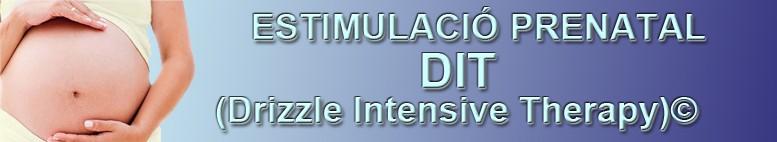Estimulació Prenatal